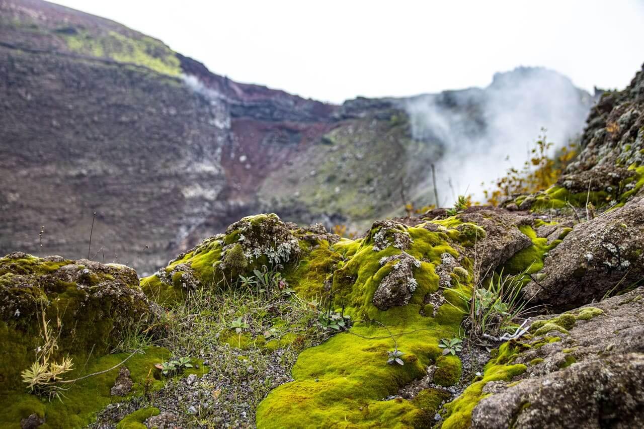 fumi cratere vesuvio