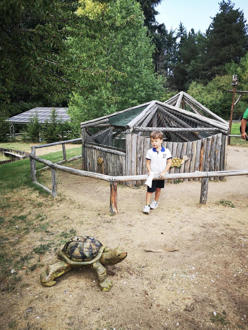 tartarughe centro visite cupone