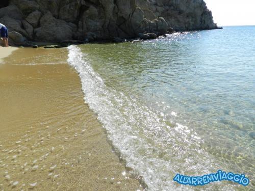 SUPER PARADISE (1)
