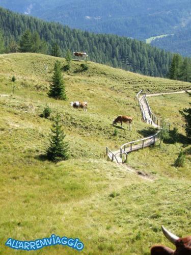 allarremviaggio viaggiare bambini dolomiti tirolo valleaurina valledibraies lagodibraies valledicasies montagna baita  (65)