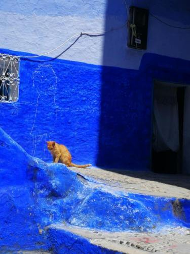 cosa_fare_in_marocco_con_bambini