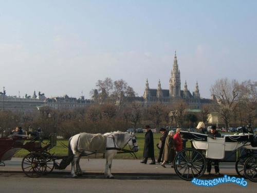 tipiche carrozze con cavalli