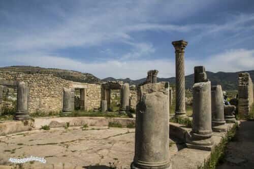 volubilis sito archeologico marocco (23)